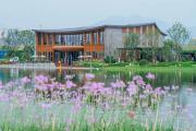 在领地莲花湖,找到理想的度假生活